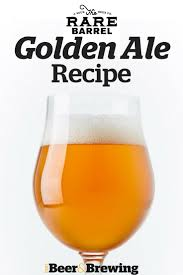 Elysian Pumpkin Ale Recipe by 81 Best Beer Recipes Images On Pinterest Beer Recipes Beer And