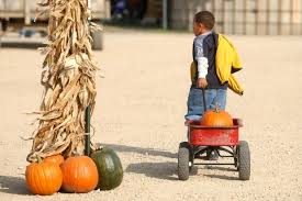 Best Pumpkin Patch Madison Wi by High Adventure To Be Found At Area Pumpkin Patches Travel Host