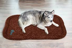 Chewproof Dog Bed by Husky Pitbull Mix Meet The Pitskies At The Happy Puppy Site