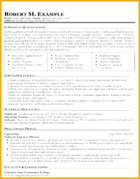 Information Technology Resume Examples Is One Of The Best Idea For You