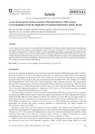 A New Dwarf Species Of Proceratophrys Miranda Ribeiro 1920 Anura Cycloramphidae From The Highlands Chapada Diamantina Bahia Brazil PDF Download
