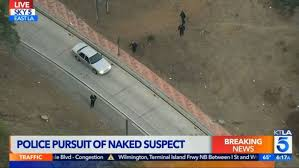Naked Man Taken Into Custody Following Police Pursuit Through East ... As Uber Gives Up On Selfdriving Trucks Kodiak Jumps In Wired The Worlds Best Photos Of Recycle And Truck Flickr Hive Mind Naked Man Drives Wrong Way Highway 111 Tries To Kiss Officer Vampire Driver Accused Kidnapping Women Keeping Them As Potato Farmers Hit By Trucking Shortage Local News Goskagitcom Creepy Driver Sees Naked Woman Vlog 977 Youtube Updated With Video Waukesha Lsd Flees Police Crashes Pickup Truck Driver Taken Into Custody After Pursuit Ends In Secret Inland Uk Beaches You Need Know About Travel He Caused 15m Damage M20 Bridge But Darlington Driving Canada Post Nabbed Star Chassis Highway
