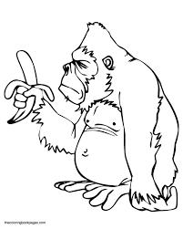 Silverback Gorilla Coloring Pages