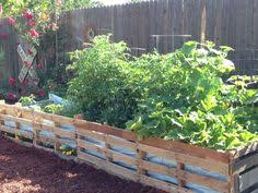 Pallet Garden 052614 With Cucumbers Peppers And Tomatoes Planted