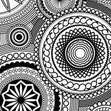 Flowers Paisley Design Adult Coloring
