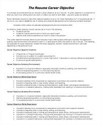 Good Resume Summary Example Of A Sample Objective 8 Examples In Word For Customer Service Recent