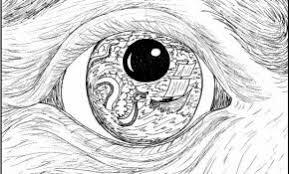 Drawing Realistic Eyes Easy Elegant Eye Art At Getdrawings