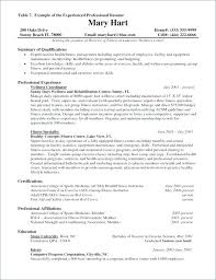 Programmer Resume Example Travel Examples Cv Template Psd