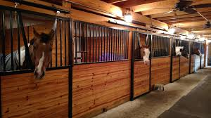 Core Structures, Inc. - Private Horse Barns Priefert Can Customize Your Stalls Barns Barrel Racing Volunteer Building Systems Robert Henard Horse Barn Pine Creek Cstruction Llc Contractors Mulligans Run Farm Free Images Page 3 Stalls Materials From Ab Martin Budget Interior Barn Ideanot The Gate For A Stall Door Though Horse Amish Sheds Bob Foote Homemade Box Made With 2 X 8s And 4 4s Horsey Homes Santa Ynez Dc Builders Stall Grills Doors How To Build