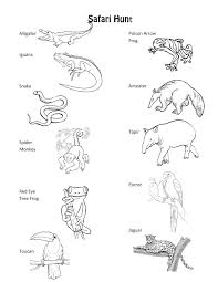 Animal Tracks Colouring Pages Page 3 With Coloring Throughout