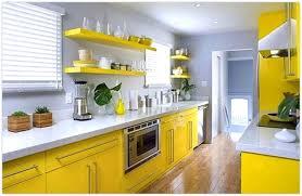 30 Green And Yellow Kitchen Ideas 1087 BayTownKitchen Showy