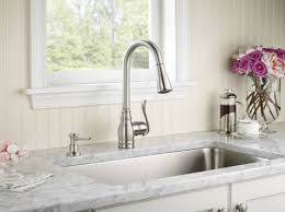 Moen Anabelle Kitchen Faucet Manual by Standard Plumbing Supply Product Moen Ca87003srs Anabelle One