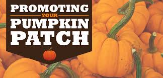 Pumpkin Patch Utah by How To Market A Pumpkin Patch For Profit Signs Com
