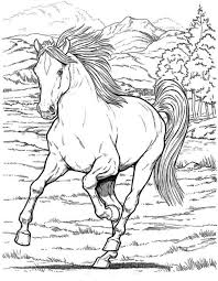 Free Realistic Wild Horse Coloring Pages To Print
