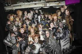 cats on broadway cats celebrates one year on broadway theatermania