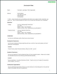 Example Cv Resume Professional Gray Cv Resume Example – Resume
