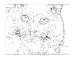 Difficult Coloring Pages For Teenagers Cool Printable Paint By Numbers Adults Kids Cat