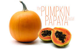 Pumpkin Enzyme Peel by Pumpkin Papaya About Face Skin Care