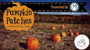 Pumpkin Farm Illinois Best by Lake County Pumpkin Patches 2016 Little Lake County