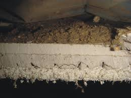 Do Acoustic Ceilings Contain Asbestos by 28 Do Acoustic Ceilings Contain Asbestos Images Of Asbestos