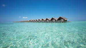 100 Maldives Lux Resort Where To Stay In The South Ari Atoll
