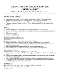 Resume Professional Profile Examples Executive Assistant With Administrative Summary
