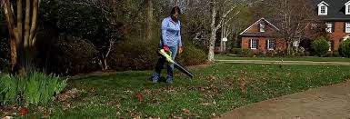The Quietest Leaf Blowers And Outdoor Power Gear - Consumer Reports Worx 125 Mph 465 Cfm 56volt Max Lithiumion Cordless Turbine Leaf Ryobi Zrry40411 Jet Fan Blower Reviews Lawn Care Pal 5 Best Electric For The Easiest Leave Cleaning Pool Admin Author At Gardenlife Pro 10 Blowers For 2017 Top Gas And In Amazoncom Dewalt Dcbl790m1 40v Max 40 Ah Lithium Ion Xr Vacuum Partner Corded 7 Your Guide To The Absolute Gaspowered Family