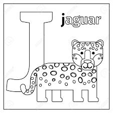 Dibujos De Animales Del Zoologico Para Colorear Personajes De