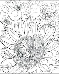 Sunflower Coloring Pages Printable Sheet