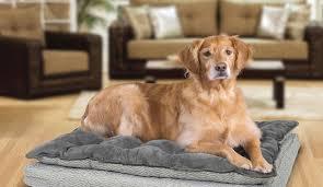 best dog bed in december 2017 dog bed reviews