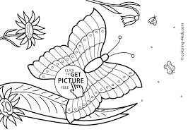 Butterfly Summer Coloring Pages For Kids Free Printable At