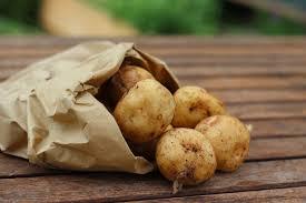 pomme de terre en robe de chambre au four pommes de terre au micro ondes