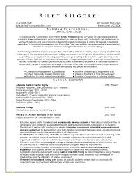 Examples Of Rn Resumes Or Hospice Nurse Resume