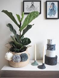 neue pflanze altes lieblingsdiy diyweek diy