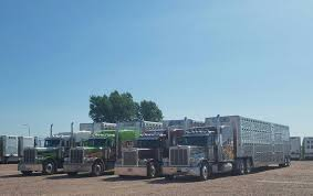 TLC / Cattle Relocation Specialist   Wilson Livestock Trailers ... 2018 Ram 4500 Pompano Beach Fl 122564914 Cmialucktradercom A Tlc Moving 17 Photos Movers 2308 E Mount Vernon St Wichita Chef Tlcs Catering Food Truck Services The Liquidation Company Auctions Surplus Lights Camera Bt Reflex In Action Shd Logistics News 2013 Freightliner Business Class M2 106 For Sale In Fort Myers Citron H Van Need Of Taken At The Henham Steam Ra Flickr Nyc Certified Medical Examination Sands Point Center Trucks Logistica Del Transporte En Colombia Home Facebook Waste Systems Kenworth T800 Galbreath Roll Off Youtube Parkside Detail And Accoriess Tweet Lets Gooo Woof