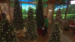 Qvc Christmas Tree Storage Bag by Bethlehem Lights 15th Anniversary 6 5 U0027 Tree W Instant Power Page