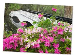 Romantic Style Gardens at Magnolia Plantation and Gardens