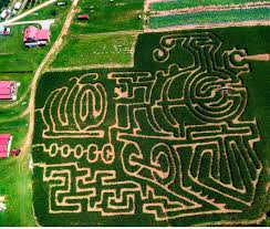 Pumpkin Farms In Georgia by Awesome Corn Mazes You Have To Do This Fall North Of Atlanta