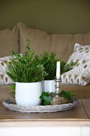 deko für den wohnzimmertisch immergrün frisch und
