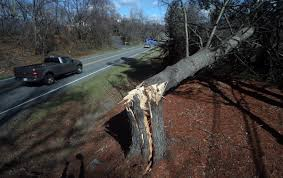 More Than 100 Photos Of Wind Damage Across Virginia From Early March ... Brannon Moore Branch Manager Rush Truck Center Linkedin Truck Paper Divorce Lawyer Shooting Victim Was Extremely Scared Of Husband Rick Hendrick Chevrolet Norfolk New Chevy Dealership Near Va Beach Dashcam Captures Moment Train Plows Through Semitrailer Stalled On 2 Injured In Crash That Closed Portion Enon Church Rd Chester Photos Videos Show Historic Tornado Outbreak Across Central Excel Group Trailerbody Builders Crash Closes Lanes After Truck Drops Trash Route 288 Royal Richmond Serving Henrico Chesterfield Pearson Preowned Used Ford Toyota Nissan And Goodman Tractor Amelia Virginia Family Owned Operated