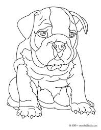 Coloring Nice Design Ideas Bulldog Colouring Pages 10