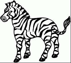 Full Size Of Coloring Pagecoloring Page Zebra Amazing Pages Impressive With And Printable Large