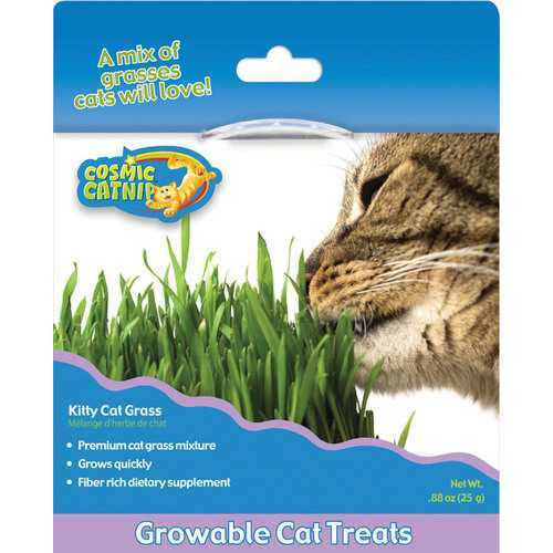 Ourpets Company Cosmic Catnip Kitty Cat Grass - 25g