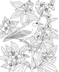 Children Tropical Flower Coloring Pages Fresh In Plans Free Tablet