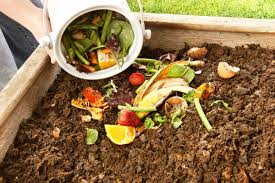 How To Compost: 10 Simple Steps To Get Started: Reader's Digest ... Organic Soils Store More Carbon Cut Emission From Agriculture 10 Things You Should Not Put In Your Compost Pile Sff How To Make A Compost Heap Top Tips Eden Project Cornwall Composting 101 Tips To Make Easy Fast Best 25 Diy Bin Ideas On Pinterest Garden Build The Ultimate Bin Backyard Feast A Diy Free Plans Cut List Tumbler Contain Your And Cook It Quickly At Home Frederick County Md Official Website Graless Backyard Landscaping Mulch Around Most Soil Cditioning