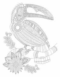 Toucan Bird Abstract Doodle Zentangle Coloring Pages Colouring Adult Detailed Advanced Printable Kleuren Voor Volwassenen Coloriage