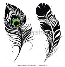 Free Isolated Peacock Feather Vector Download Free Vector Art
