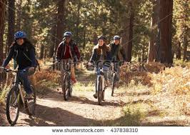 Group Four Friends In Helmets Riding Bikes On A Forest Path