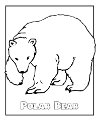 Polar Bear Color Pages