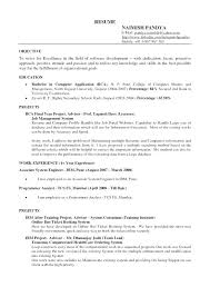 General Objectives For Resume Curriculum Vitae College Resumes Format Career Objective Examples